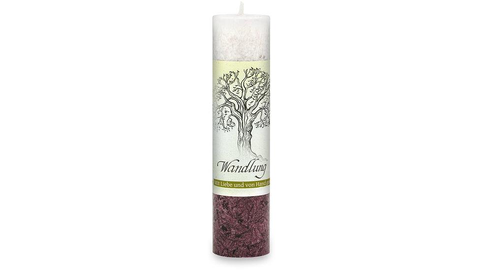 Heilkräuterkerze - Geist der Bäume - Wandlung