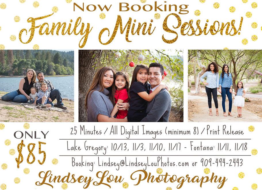 Family Mini Session Advertisement.jpg