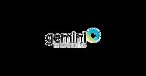 Gemini_Logo_LI-Twitter-01_edited.png