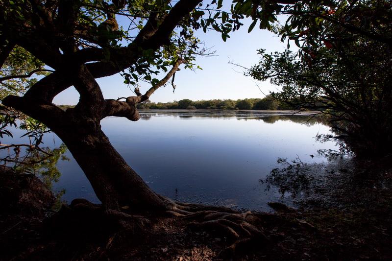 Laguna Babilla