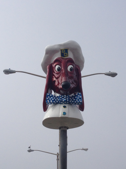 (21) Doggie Diner Head - Office Photo.png