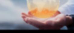 Fireseed_Capital_Header-v2.png
