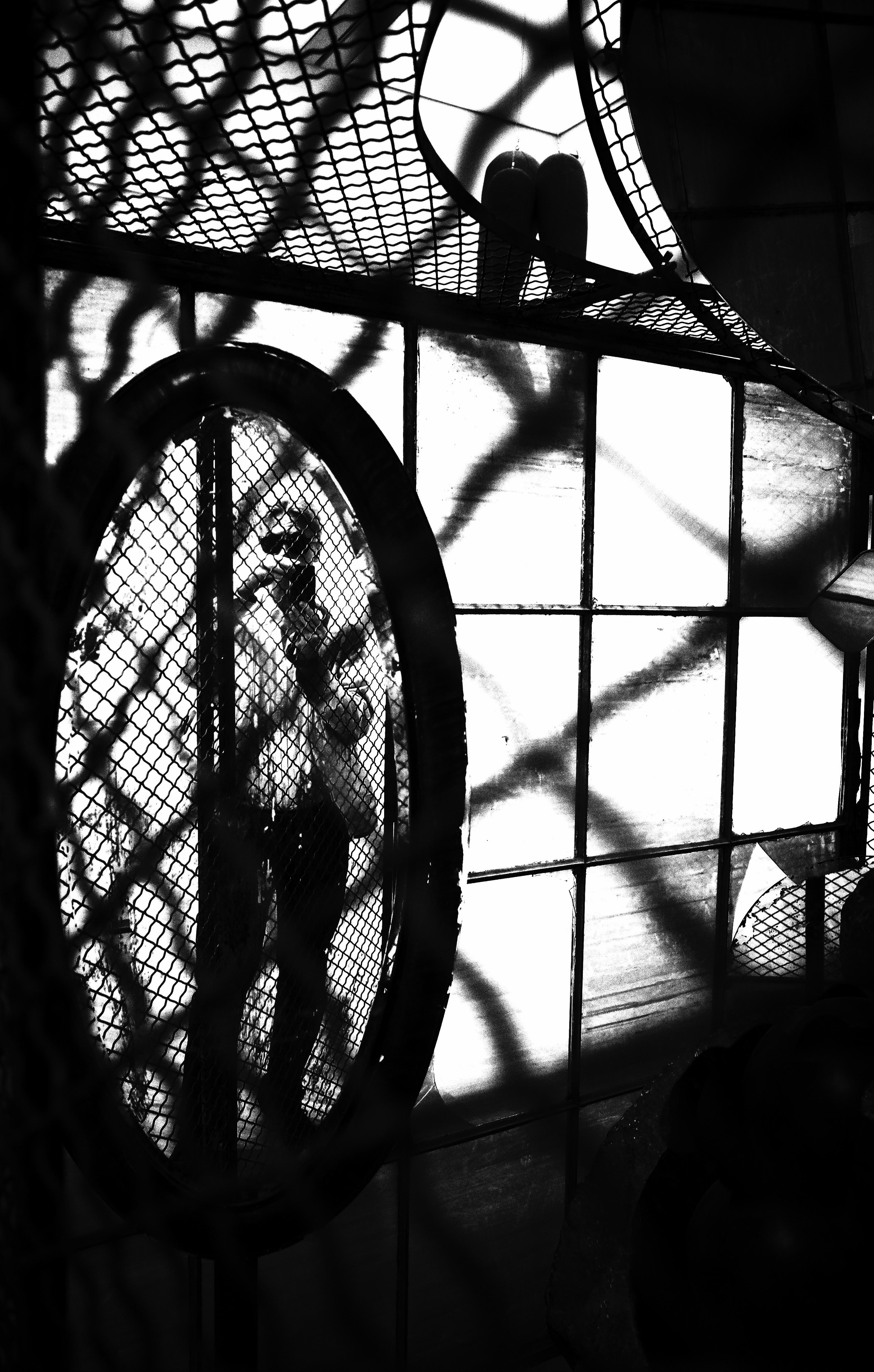 Self-Portrait, Switch House, London
