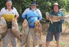 Fishing club jewie session