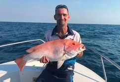 Saddletail reef fishing