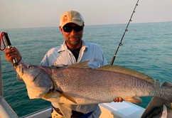 Anaja jewfish in hire boat