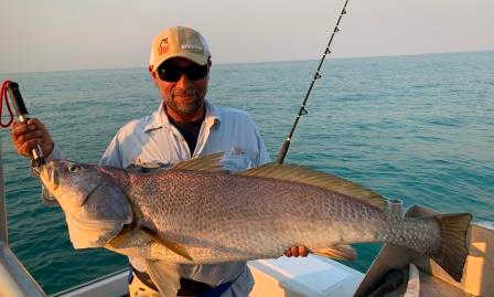 Anaja jewfish in hire boat