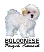 Puget Sound Bolognese_Logo with White Background.png