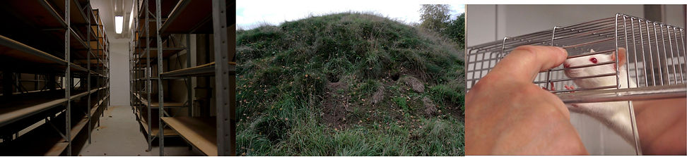 laura-løwe-arkiv-22.jpg