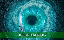 life synchronicity_2_edited.jpg