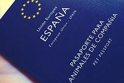 pasaporte-mascotas.jpg