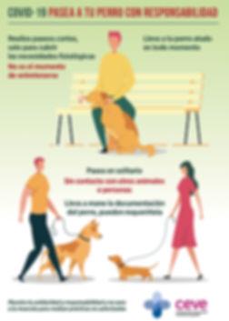 Normas paseo perro Covid-19