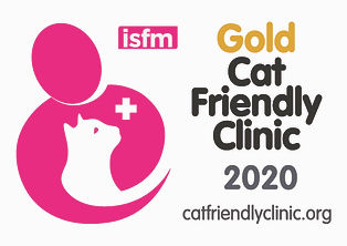 CFC Gold logo for clinics 2020.jpg