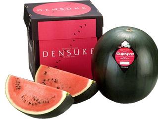 Самые дорогие дыни и арбузы в мире продаются в гофрокартонной коробке