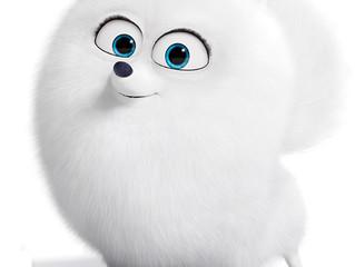 Белый, белый, белый... гофрокартон