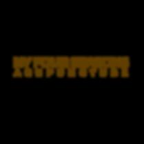 ny4s 2019 logo.PNG