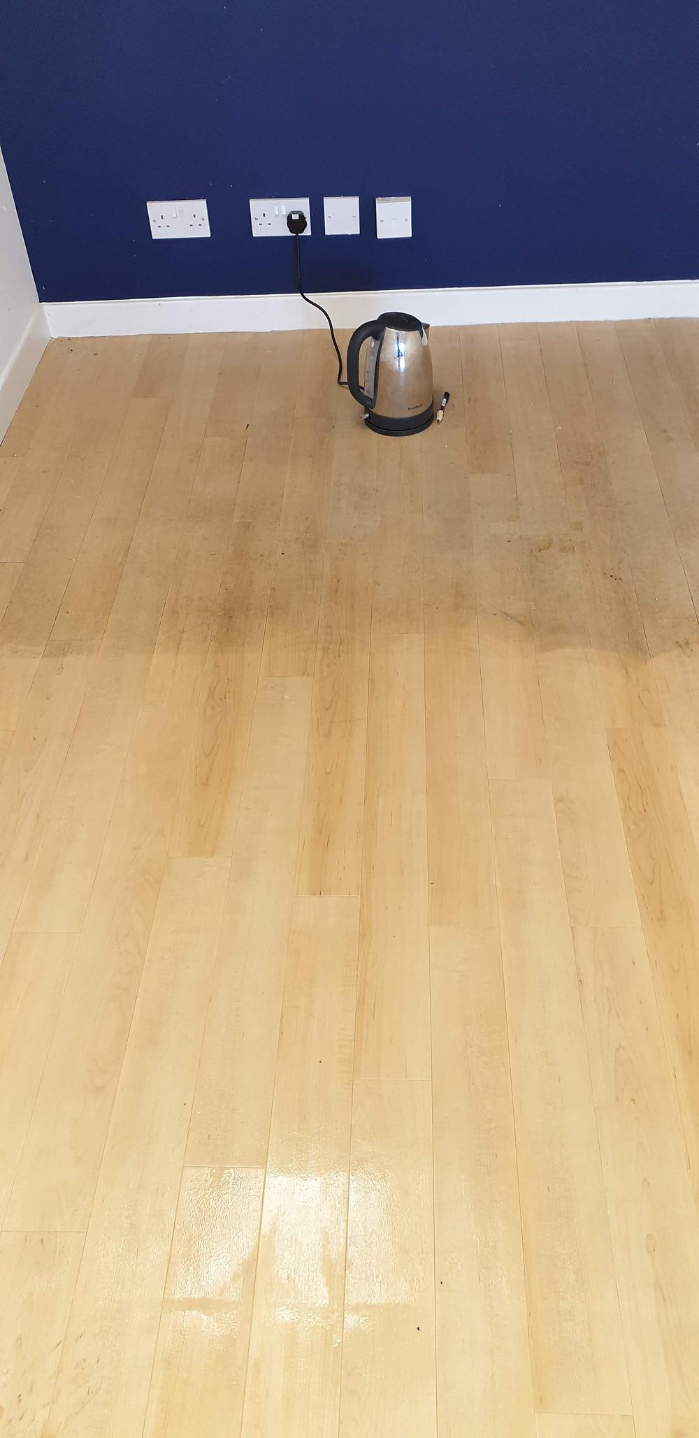 Vinyl floor cleaning Ayrshire