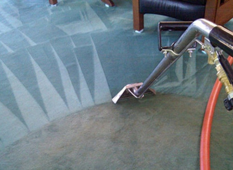 Professional Carpet Cleaning vs Doing it Yourself
