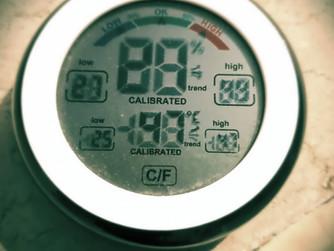 Extreme Hitze im Heiligen Land