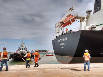 Porto do Açu supera volume movimentado no ano passado