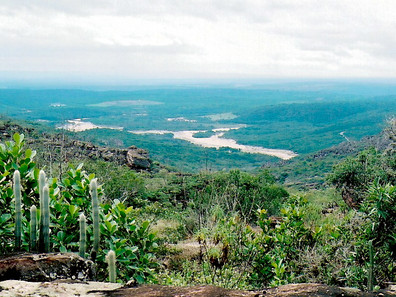 Ambientalista diz que situação dos rios Jacuípe e Paraguaçu preocupa e cobra mais ações do governo d