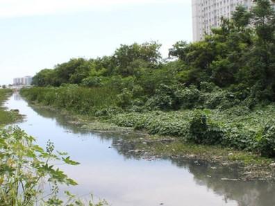 Rios de Jacarepaguá vão ganhar ecobarreiras para conter plantas e lixo
