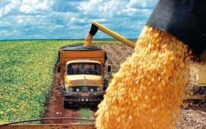 Matriz de transporte de milho e soja se diversifica, mas nas exportações uso de rodovia cresce