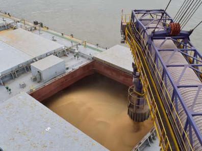 Line-up de um dia nos portos mostra volume para um mês de embarque de soja