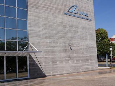 ANTAQ deve publicar editais para licitação de áreas em Vila do Conde (PA) em fevereiro