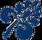 logo%20blaudruck_folprecht_39kb_edited.p