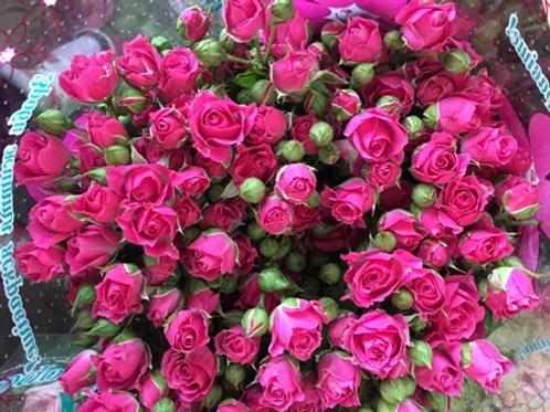 """Роза """"Лиана"""" (упаковка - 20 шт) - 60 см"""