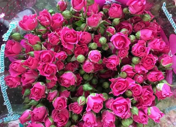 """Роза """"Лиана""""  (упаковка - 20 шт) - 50 см"""