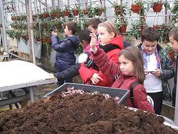 школа 2094, молодые работники ЖКХ, гбу озеленение, дети, школа,экскурсии