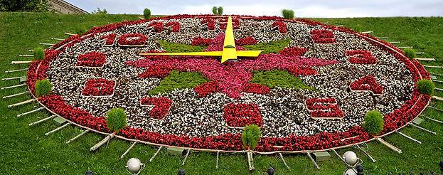 гбу озеленение цветники  парк победы