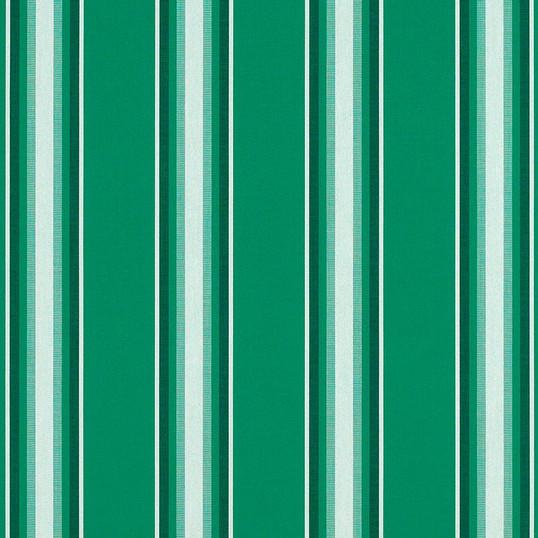 Green-Fancy_4754-0000.jpg