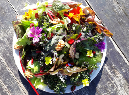 La salade Jazzy est de retour