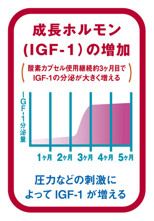 成長ホルモン(IGF-1)の増加