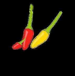 logo the chilli shop clean transparant.p