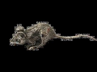 925 Silver Large Rat