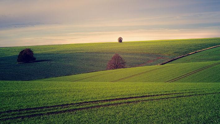 Shortgreen gebruik minder land