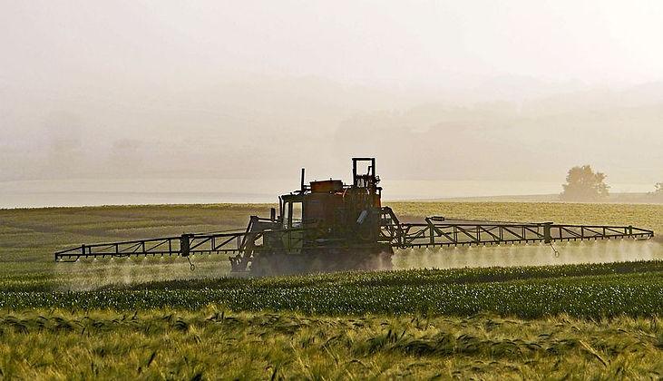 Short Greens gebruikt geen pesticide