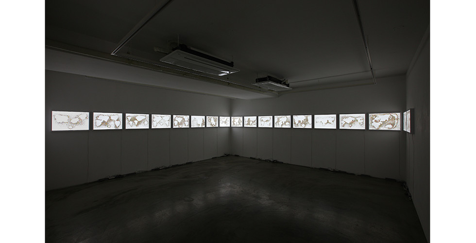 Installation view of The Plastic Ocean (#01~#18), 2014