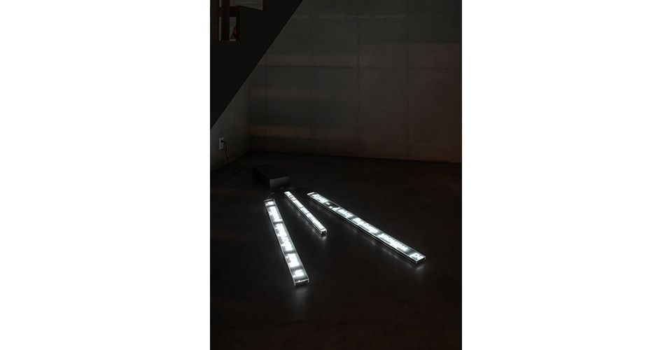 The Second Sex, Sexual Politics, A Room of One's Own, 2020, LED, Dimensions variable