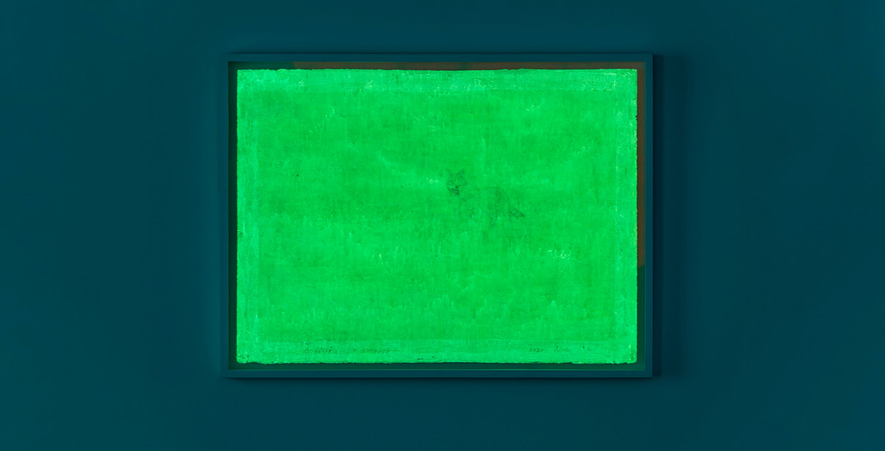 A Wolf, 2020, acrylic & phosphorescent pigment on paper, 56 x 76 cm