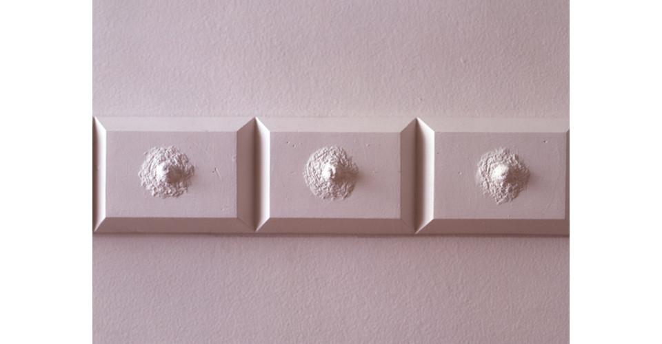 molding (Smoke Stain Rose), 1996, detail, plaster, paint, variable dimensions
