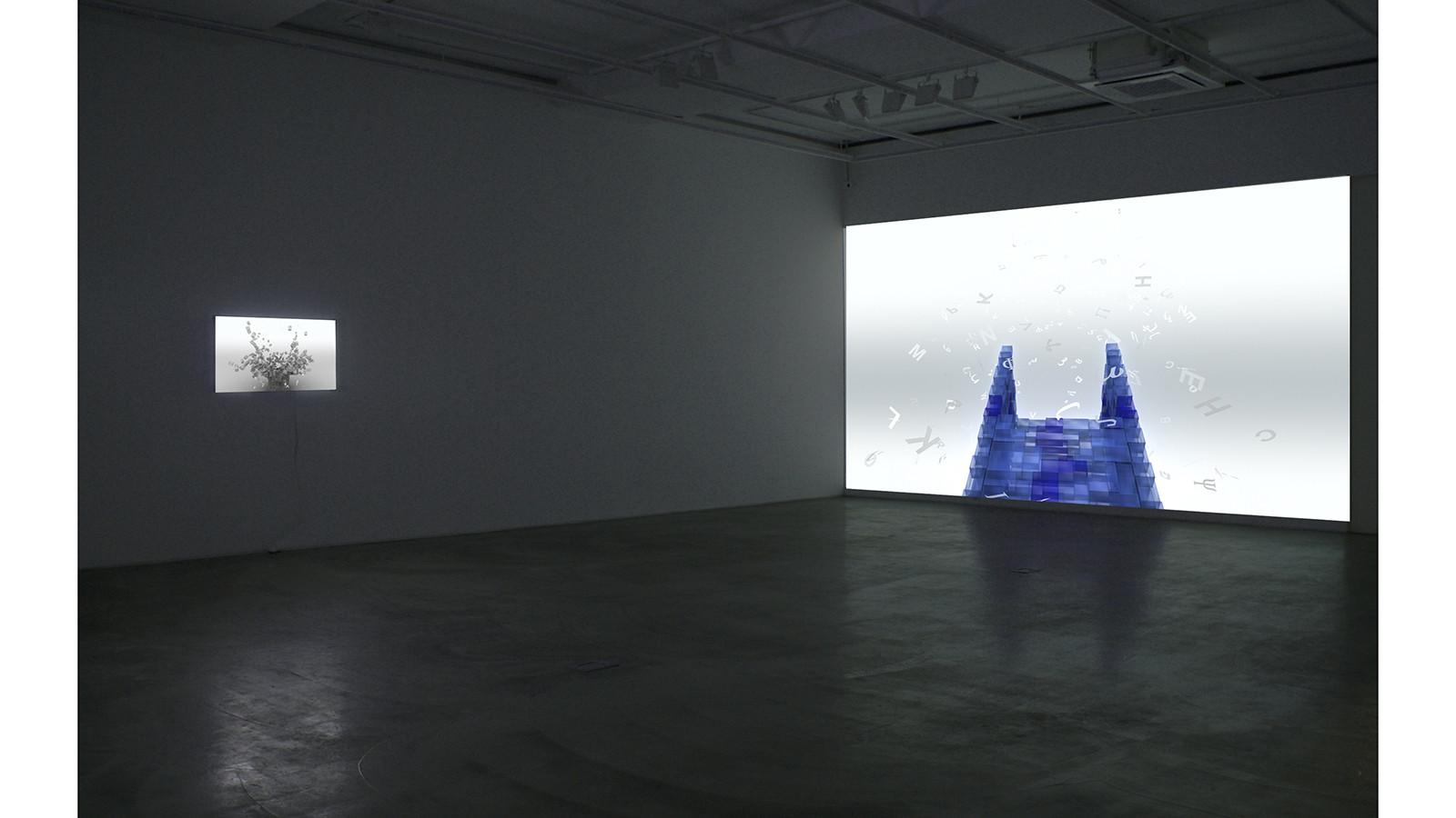 Installation view of solo exhibition, Evidence of the Invisible, Gallery Simon, 2012