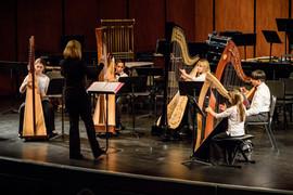117-Harp.jpg