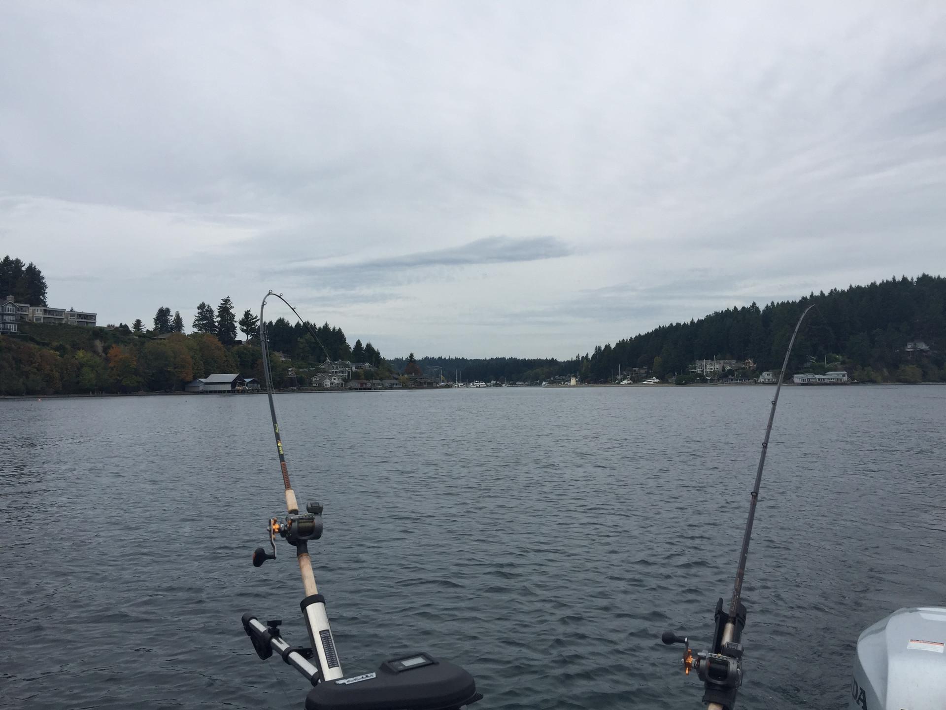 24 Puget Sound