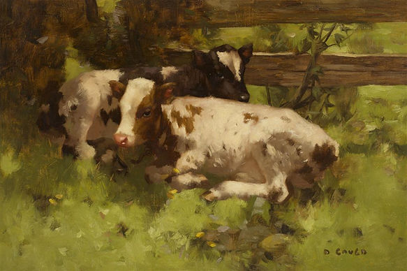 David Gauld artist for sale Calves Ayshire art paintings Glasgow Boys Nicholas Holloway cattle Scottish