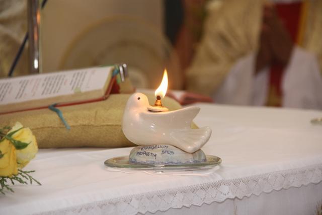 Simbolo dell'Anno della Vita Consacrata